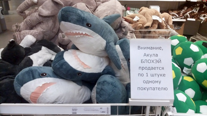 IKEA продаёт по одной акуле в руки. Публикуем доказательства