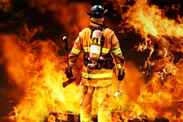 Началась весенняя эпидемия пожаров и краж