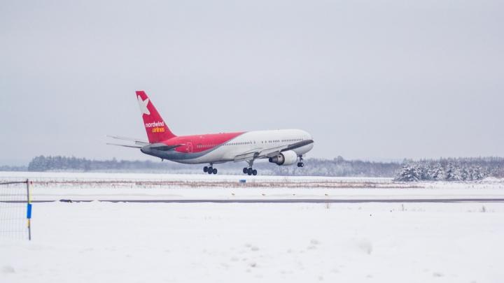 Пальма вместо ёлки: авиаперевозчики увеличили количество рейсов из Курумоча на новогодние каникулы
