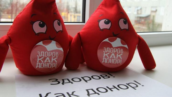 В центре Уфы на площади будет работать пункт для сдачи крови