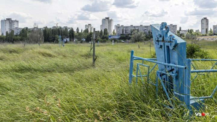 «Могилы выкопают, и свалят кости»: в Волгограде разрушается древнее кладбище