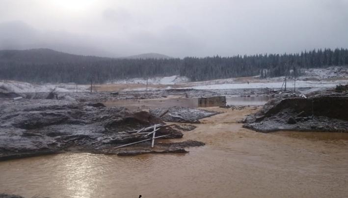 Экологи просят Путина запретить выдачу лицензий на добычу россыпного золота после трагедии на Сейбе