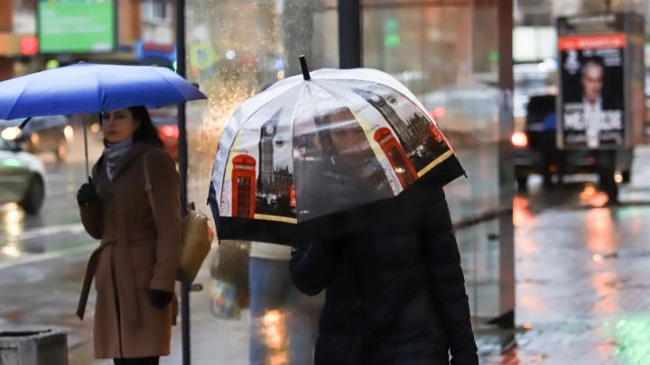 Снег, дождь и гололед: рассказываем, какая погода ждет ростовчан в выходные