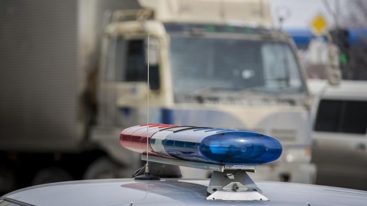 «Выехал на встречную фуру»: водитель грузовика погиб в ДТП в Новосибирской области