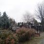 Больше деревьев, меньше мусора: на Северное кладбище в Ростове потратят 20 миллионов рублей