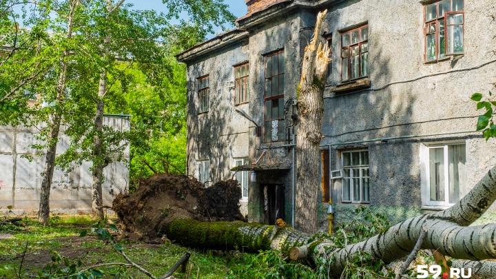 Глава Перми поручил устранить все последствия урагана за выходные. Получилось?