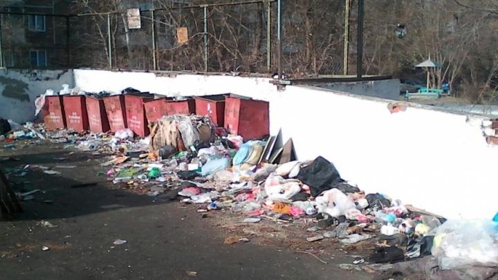 Глава Челябинска объяснил, куда жаловаться на грязные контейнерные площадки во дворах