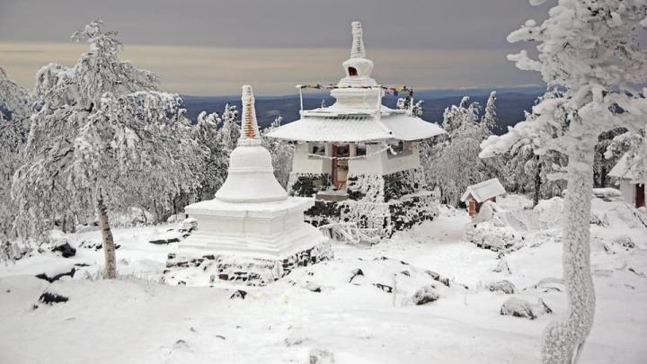Ледяные деревья, хитрая белка и остров как в рекламе «Баунти»: выбираем лучшее фото ноября на Е1.RU