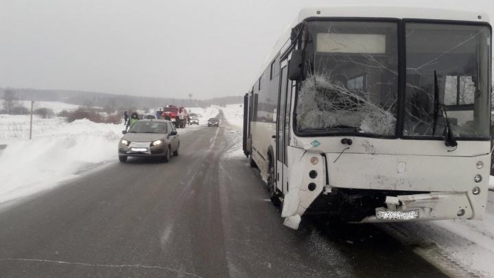 В Прикамье в смертельной аварии с автобусом погиб водитель иномарки
