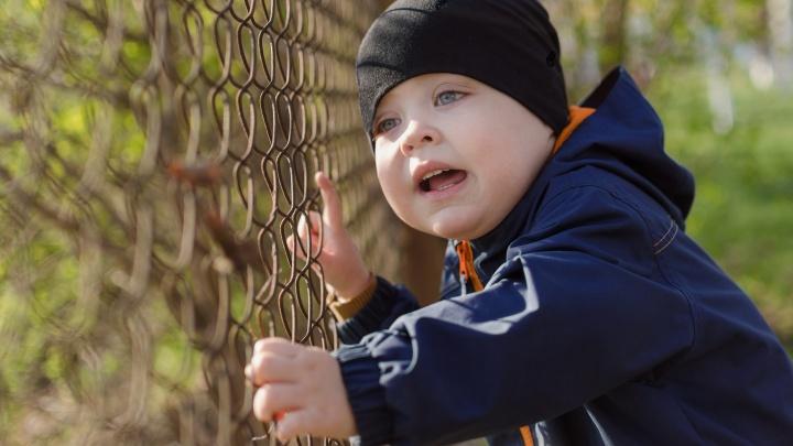 В Ростовской области взялись за социализацию детей-сирот
