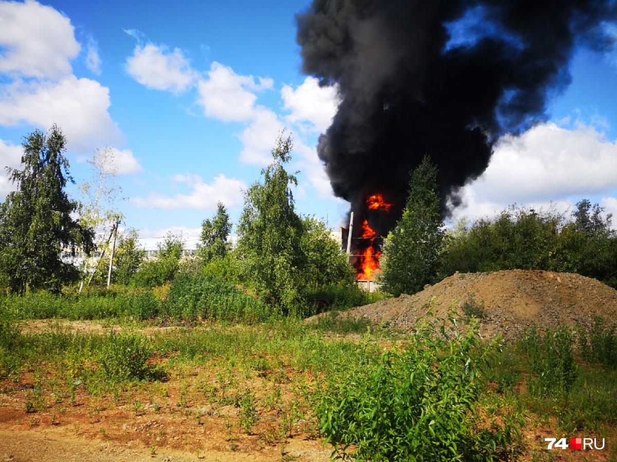 Очевидцы сняли происшествие в посёлке Тарасовка на фото и видео