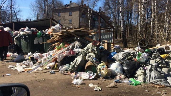 Прокуратура Ярославля заставила управляющую компанию убрать свалку у детского сада