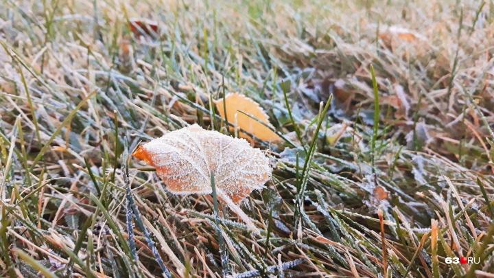 Готовим обогреватели: в Самарской области прогнозируют заморозки до -3 °С