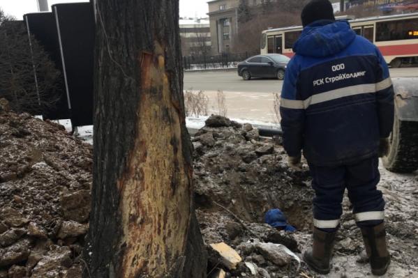 По словам активистов, подрядчик обработал варом только крупные повреждения, а мелкие оставил без внимания