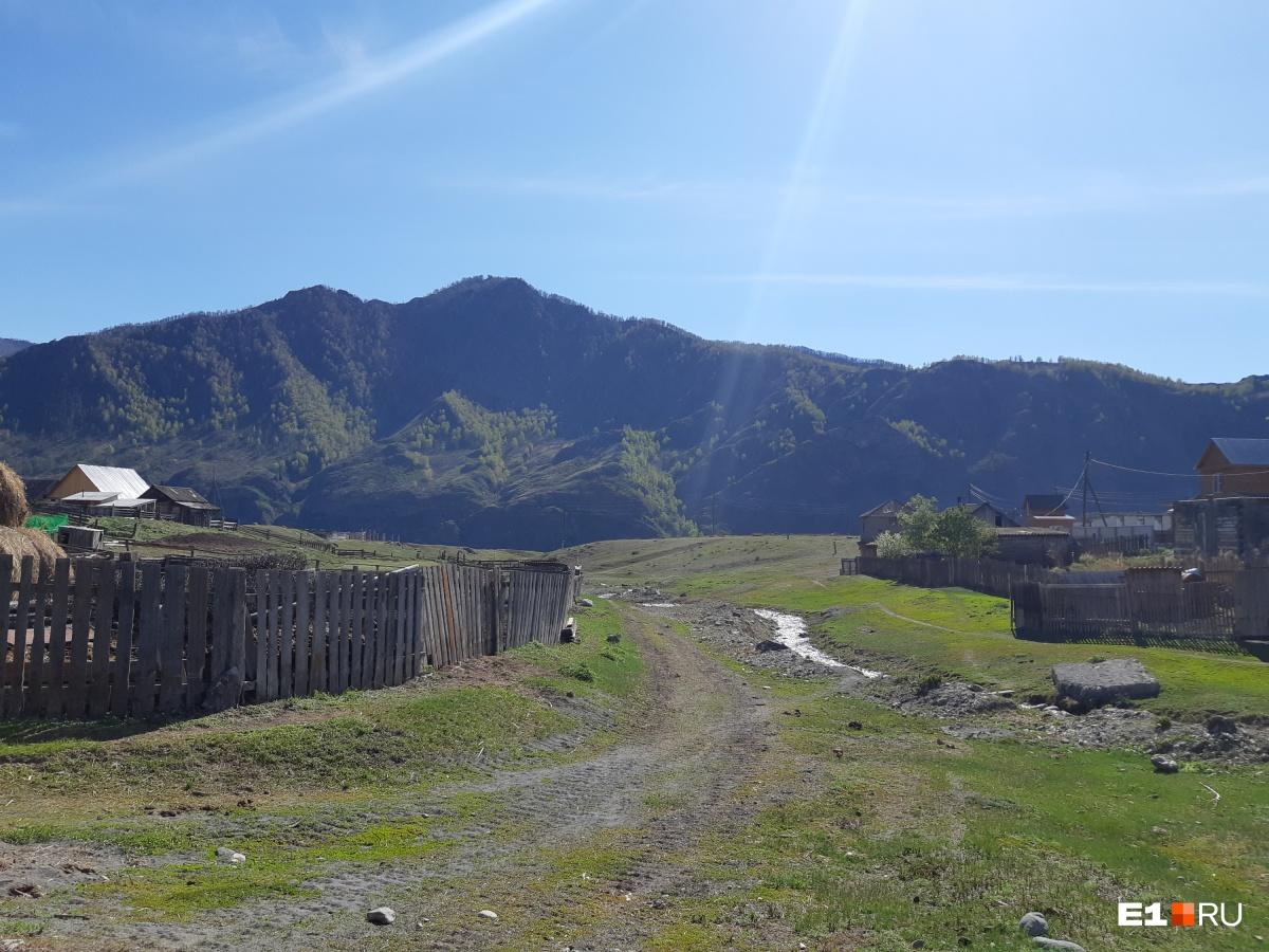 Немного отклоняемся от Катуни, проезжаем село Куюс, а дальше через ручеек — снова к Катуни. Указателей никаких нет