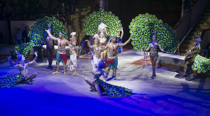 Такой цирк точно удивит: в Тюмень приехали артисты цирка Гии Эрадзе с ошеломительным шоу «Баронеты»