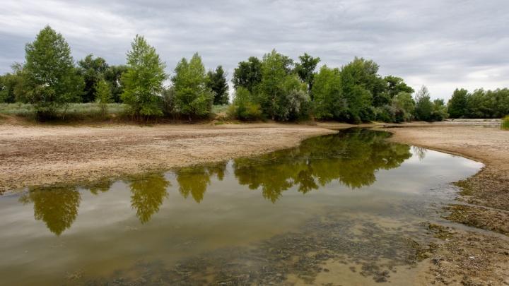 В Краснослободский тракт Волго-Ахтубинской поймы под конец лета зашла вода