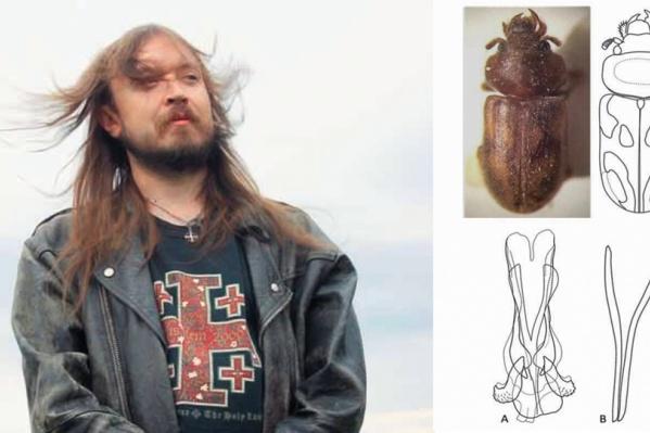 Егор Летов и впервые открытый жук-пилоус, названный в честь музыканта