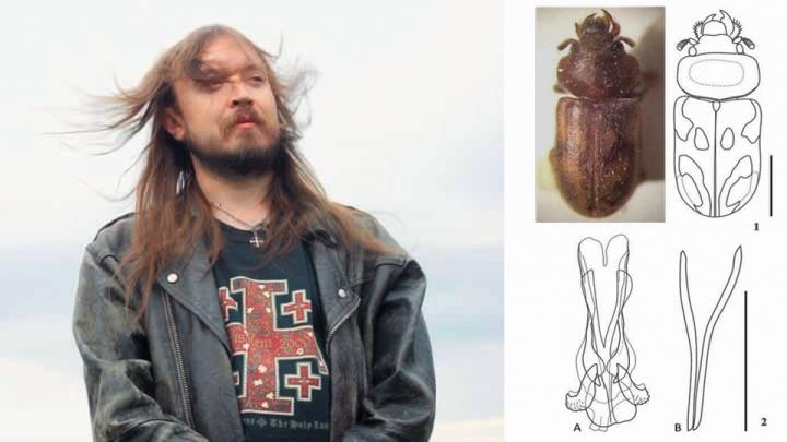 «Это дань уважения»:энтомолог открыл нового жука и назвал его в честь Егора Летова