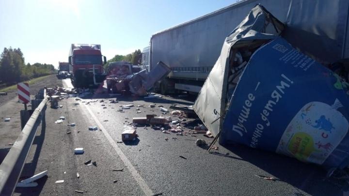 На трассе Курган— Челябинск в Щучанском районе при столкновении грузовиков погибла девушка