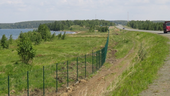 «Частная собственность, злые собаки»: на озере Увильды огородили забором последний свободный пляж