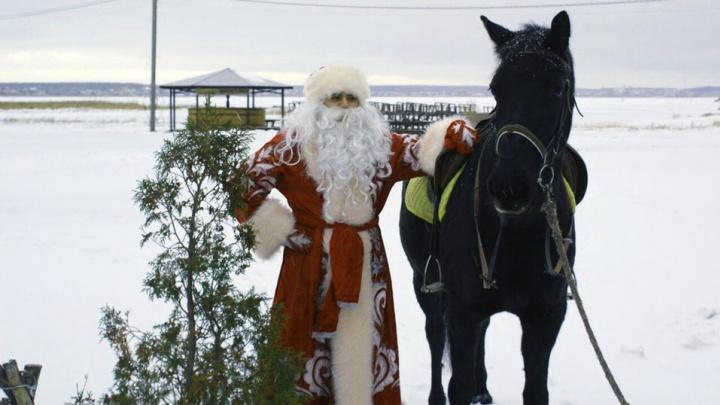 Новый год за городом: в центре отдыха «Боярская станица» остался последний свободный коттедж