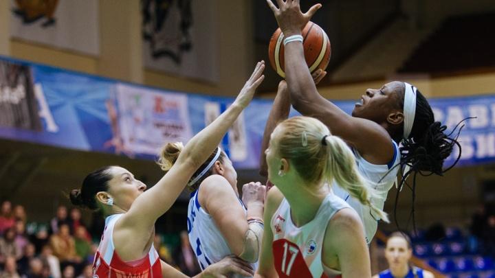 Баскетбол: БК «Динамо» победил ногинский «Спартак»