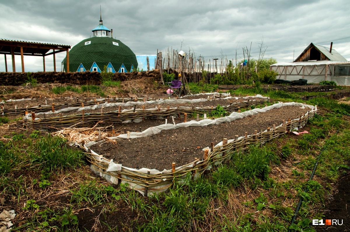 Семья использует не всю землю, на части участка они разбили огород