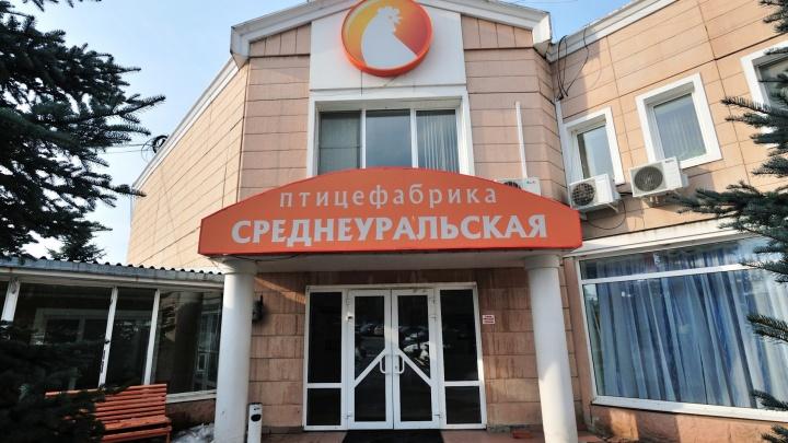 """27 тонн живых кур банкротящейся птицефабрики """"Среднеуральская"""" выставили на торги за 2 миллиона"""