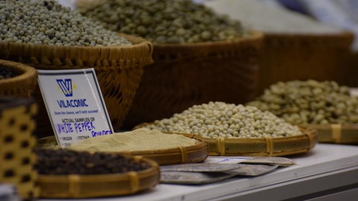 Самый дорогой кофе в мире привезут в Новосибирск на три дня