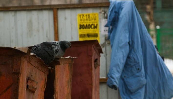 Чище всех Москва: экоактивисты, власти и путешественники —про Архангельск в пятёрке грязных городов