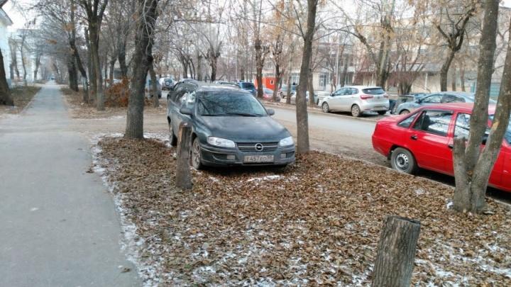 Штрафы для гряземесов отменили: три причины, почему областной суд встал на сторону нарушителей