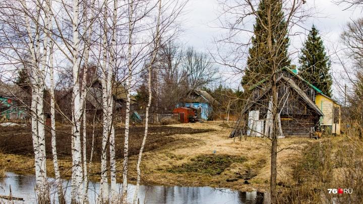 Прибрали к рукам земли на 3,6 миллиона рублей: в Ярославской области судили двух женщин