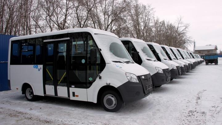 Стало известно, как поедут новые маршрутки по улицам Омска