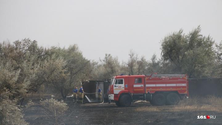 Ростовчанам запретили ходить в леса из-за высокой пожароопасности