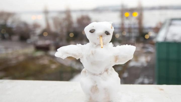 Когда же выпадет долгожданный снег? Публикуем прогноз погоды на новогодние праздники