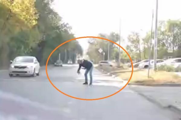 Пешеход унес котенка как можно дальше от дороги