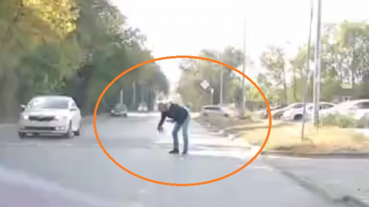 «Человечище, который дал ему шанс»: в Волгограде мужчина спас котенка от оживленной трассы