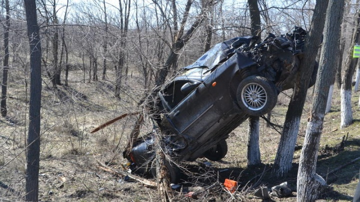 В Ростовской области иномарка вылетела с дороги и застряла в ветвях деревьев