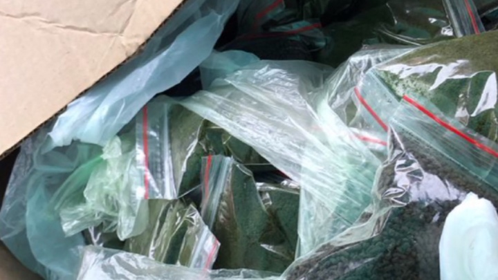Курага и насвай: на рынке в Нижнем Новгороде изъяли 13 килограммов запрещённой табачной смеси