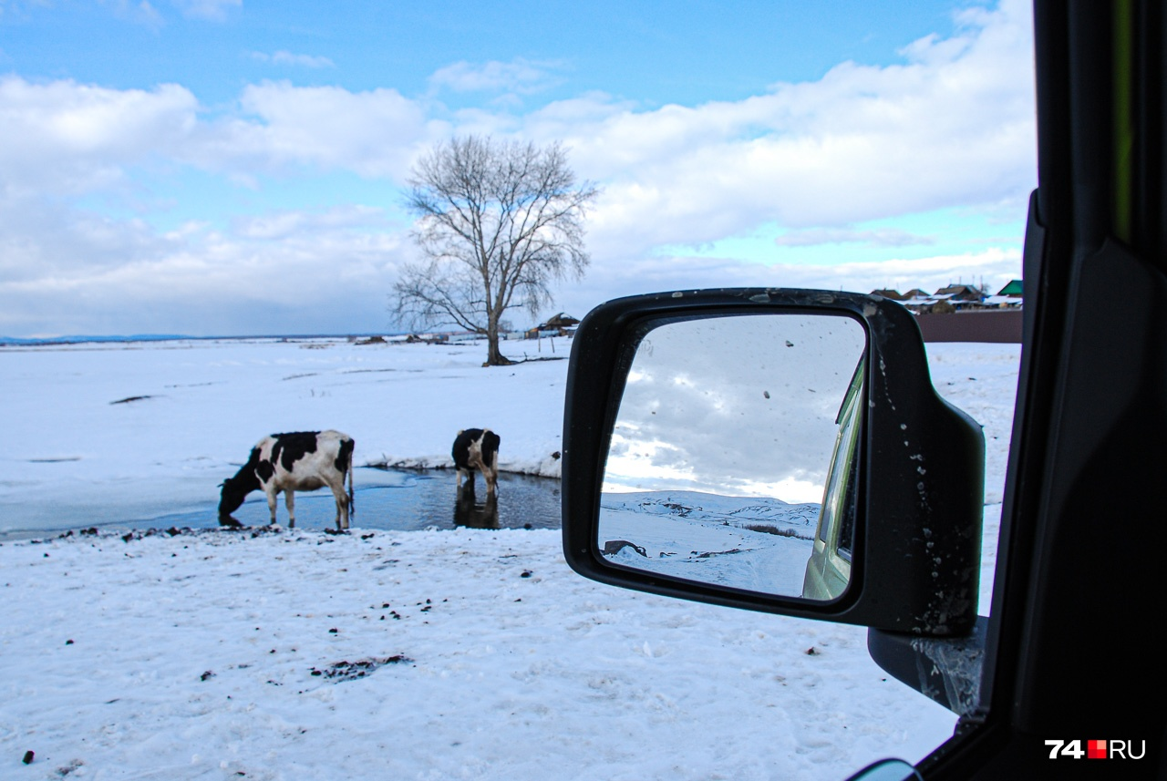 Зеркала — загляденье