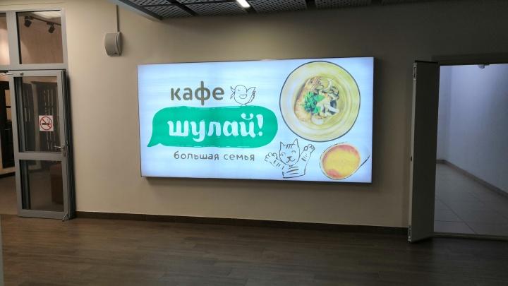 Желтый салат и странный том ям: обзор нового кафе в Уфе