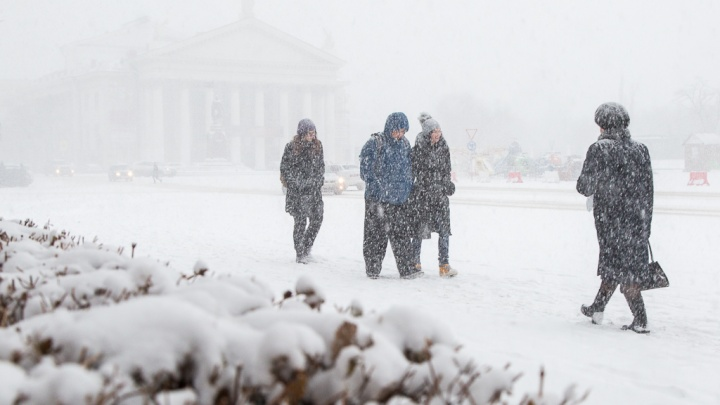 «Из осени — в зиму»: Волгоград после утреннего дождя засыпает снегом