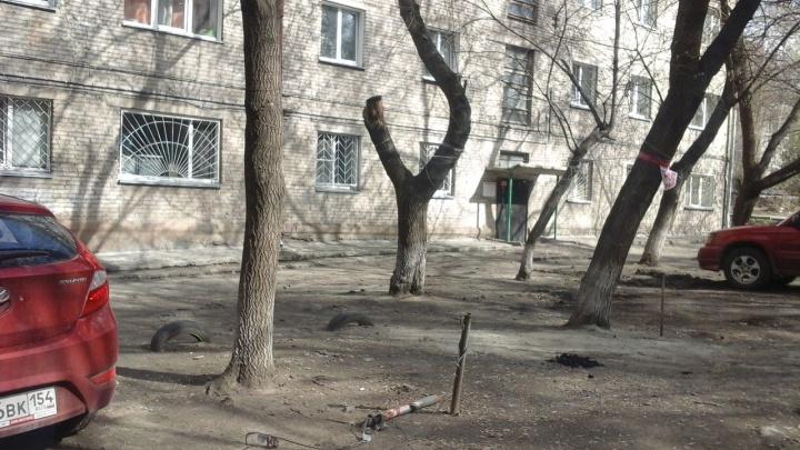 Компания пожарила шашлыки на газоне под присмотром пожарных