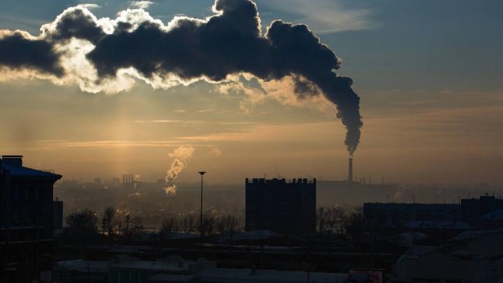 «В горле ощущение сухости и горечи»: новосибирцы пожаловались на смог и запах гари