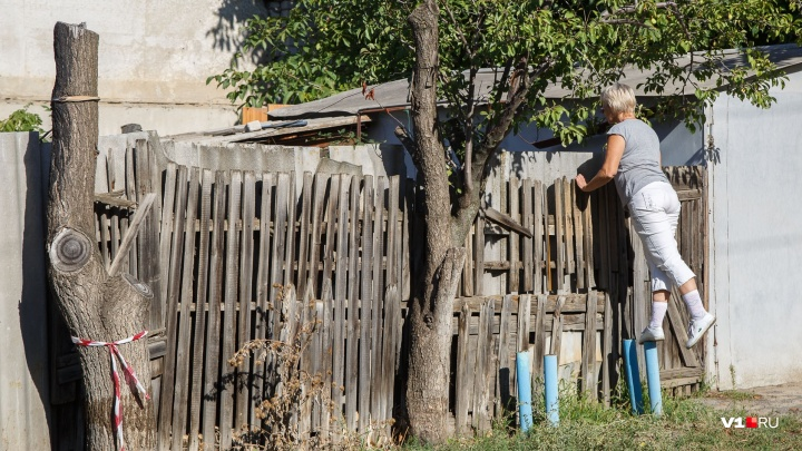 «Он просил покататься на колесе обозрения»: в Волжском ищут пропавшего семилетнего мальчика