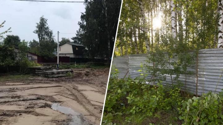 Берёзовую рощу в Рыбинске, где хотели поставить часовню, всё же застроят: что там появится
