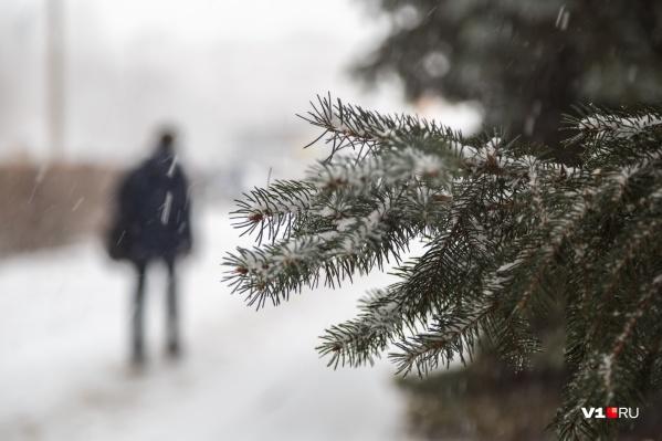 Зима в Волгоград придет, но не раньше чем через две недели