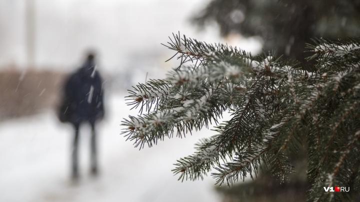 Синоптики рассказали, когда Волгоград скуют 20-градусные морозы