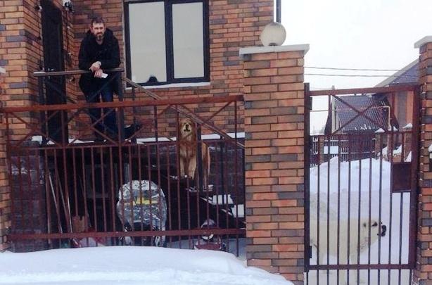 «Угрожал натравить собаку на меня»: соседи владельца опасного пса вступились за израненную девушку